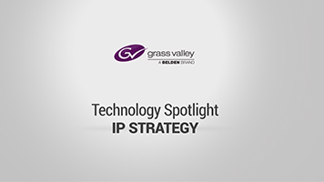 Technology Spotlight: IP Strategy